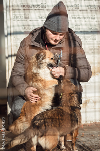 Dog trainer playing with rescue stray dog from dog public shelter
