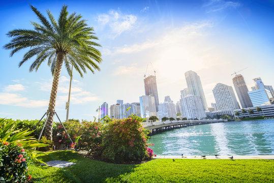 Sunshine Miami. Located in Downtown Miami, Florida, USA.