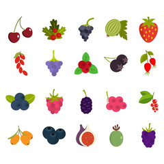 Berries icon set, flat style