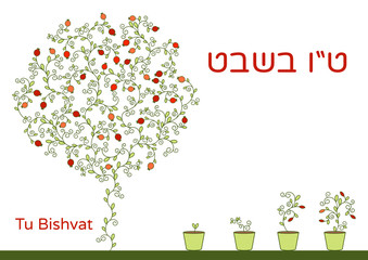 Vector illustration of Jewish holiday. A tree with pomegranate fruits, branches, swirls for greeting card or poster. Text Tu Bishvat on Hebrew, which means the Jewish holiday New Year of the Trees.