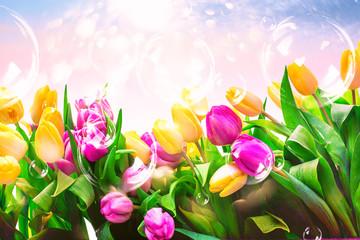 Karte mit Tulpen Pastell Hintergrund