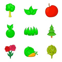 Herb icons set, cartoon style