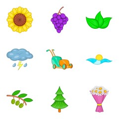 Pollination icons set, cartoon style