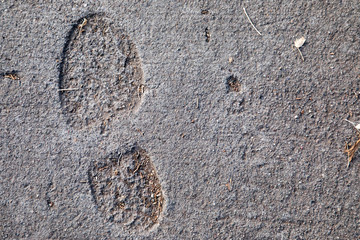 Shoe print in cured concrete