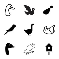 Bird icons. set of 9 editable filled and outline bird icons
