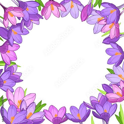Crocus saffron floral wreath border frame template purple violet crocus saffron floral wreath border frame template purple violet spring flowers green leaves round mightylinksfo