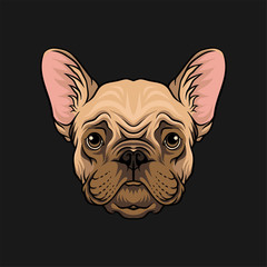 Head of pug dog, face of pet animal hand drawn vector Illustration