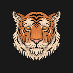 Head of tiger, face of wild animal hand drawn vector Illustration