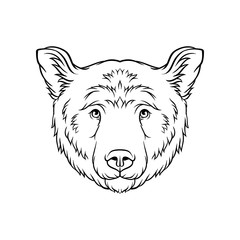 Black and white sketch of bears head, face of wild animal hand drawn vector Illustration
