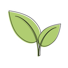 Leaves plant symbol icon vector illustration graphic design