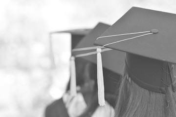 Back portrait of graduates wearing black hat