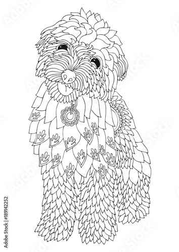 Golden doodle. Hand drawn dog. Sketch for anti-stress adult coloring ...