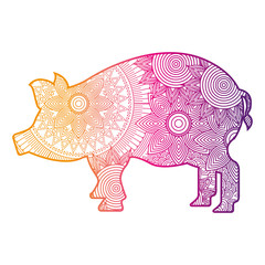 hand drawn for adult coloring pages with pig zentangle  vector illustration color line gradient design