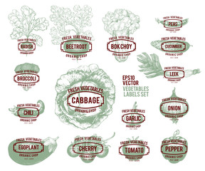 Collection of hand drawn vegetable illustrations, vector illustration in vintage style. Labels with various vegetables. Set of logo templates for shops and markets of organic vegetarian food.