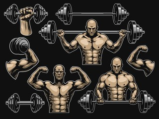 Elements for bodybuilding