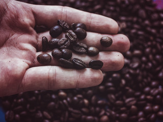 close up shot of the coffee beans in the hand