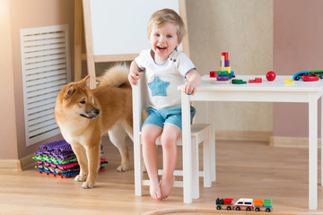 Happy child with dog at home. Portrait of 3 years old boy with pet having fun together. Shiba inu with family
