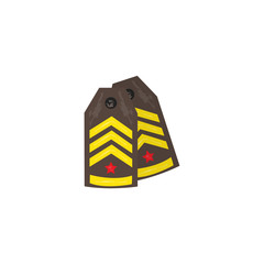 Vector flat army, military, 23 of february, Russian Defender of the Fatherland Day symbol icon - military shoulder strap. Isolated illustration, white background.