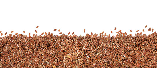 Flax grain panorama, isolated on white.