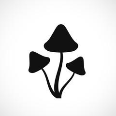 Psilocybin hallucinogenic mushrooms silhouette