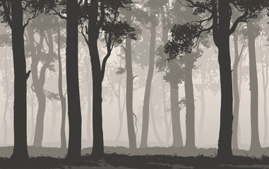 Wall Mural - Seamless background horizontal. Silhouette of the deciduous forest, vector illustration
