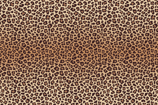 Leopard texture, imitation of leopard skin