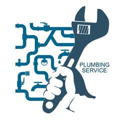 Repair of plumbing and water pipes