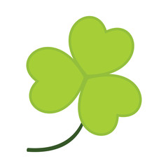 Common Clover Leaves Vector Illustration Graphic