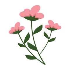 Simple Flowery Plant Vector Illustration Graphic