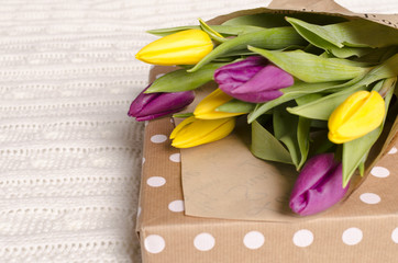 bouquet of yellow and purple tulips on fabric background