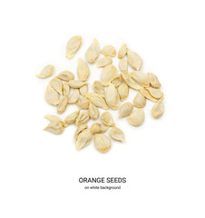 Orange and Mandarin Seeds