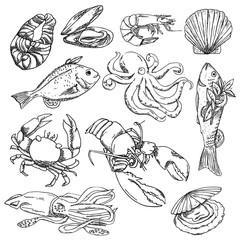 Vector illustration background, wallpaper, backdrop. Vintage hand drawn sketch. Collection of seafood