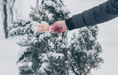 A man in a winter jacket collects Russian rubles in the snow. Banknotes of five thousand rubles in the winter