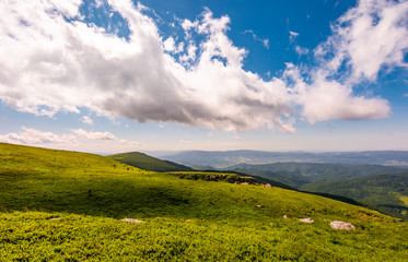 grassy meadow on mountain hills. lovely summer scenery of Runa mountain, Ukraine