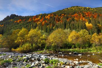 Fall landscape in National Park Retezat, Romania, Europe