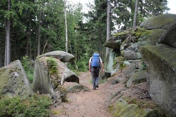 Fototapete - Wanderer am Püttnersfelsen