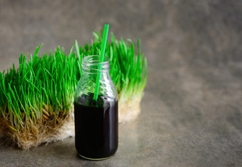 Freshly squized wheatgrass portion in a bottle with a straw