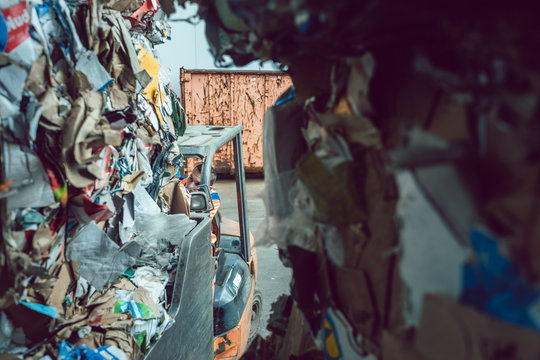 Cardboard and paper having been separated in waste reclamation plant
