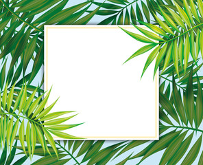 Palm leaves, Tropical Exotic plants Square frame, botanical illustration. Template for greeting card, wedding invitations, banner, poster. Border for advertising tours, summer vacation, holidays