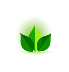 Green ecology leafs vector
