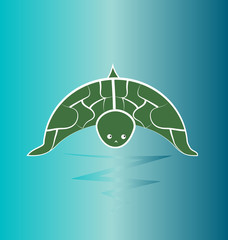 Turtle wildlife, preservation vector
