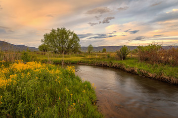 Spring landscape in the Wasatch Mountains, Utah, USA.