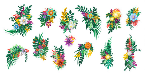 Floral bouquet design. Flowers branches elements isolated.