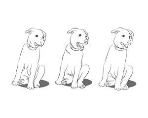 Outline of a puppy on a white background