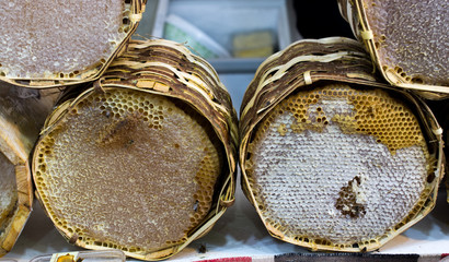 Fresh honey in the sealed comb frame
