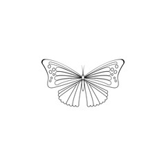 butterfly icon. Insect world elements icon. Premium quality graphic design icon. Simple line icon for websites, web design, mobile app, info graphics