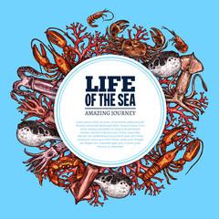Vector poster sea life ocean fish sketch animals