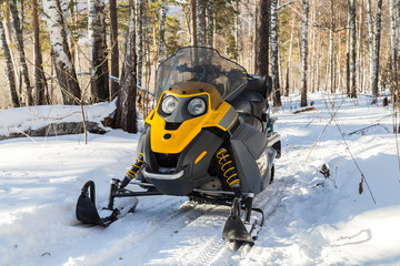 Picture with a snowmobile