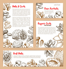 Vector sketch posters of nuts and fruit seeds