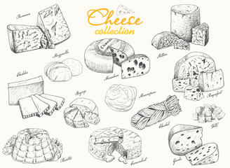 A collection of various cheeses